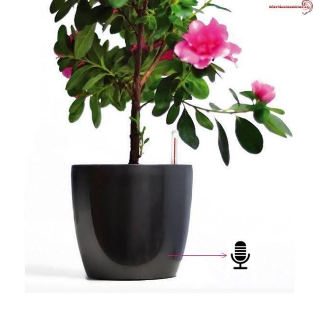 Minimicrofon GSM spion cu activare vocala, 40 de ore, in ghiveci pentru flori negru GXL40HZ